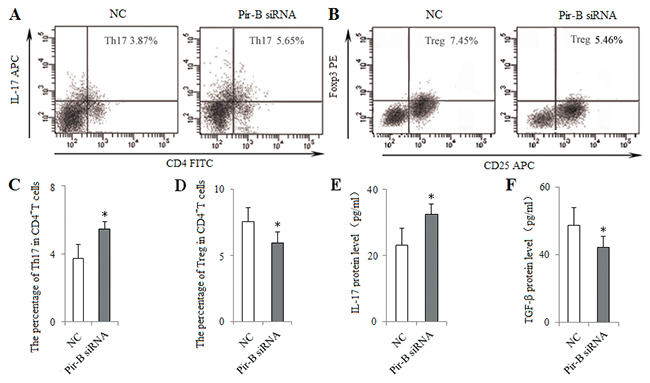 In vitro knockdown of Pir-B increased Th17 response and decreased Treg differentiation.