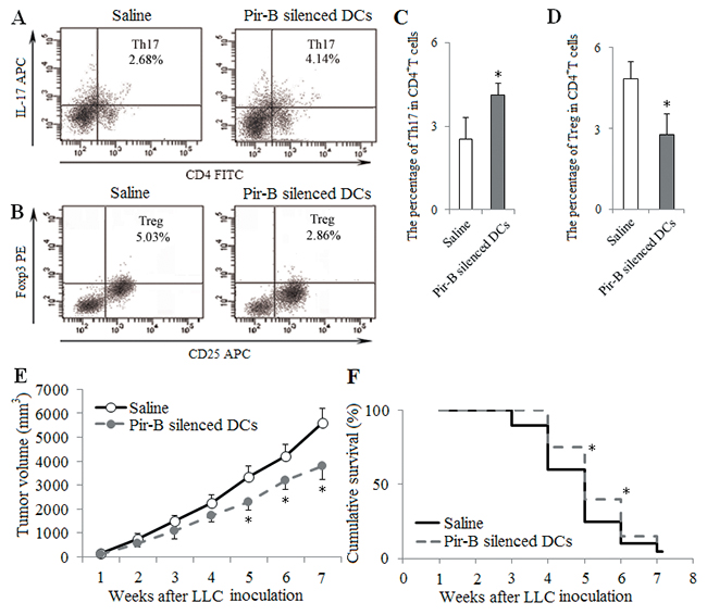 In vivo transfer of Pir-B silenced DCs increased Th17 response and decreased Treg differentiation.