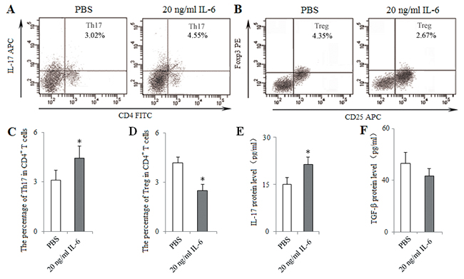 In vitro administration of IL-6 induced Th17 response and inhibited Treg differentiation.