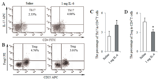 In vivo injection of IL-6 induced Th17 response and inhibited Treg differentiation.