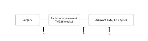 Timing of treatment and calculation points of platelet and lymphocyte counts: A, B, and C represent platelet and lymphocyte counts before CRT, after CRT, and during adjuvant TMZ, respectively.