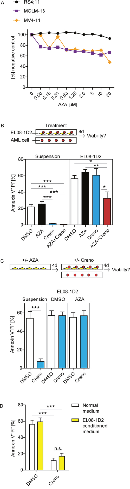 The addition of AZA to creno can overcome stromal resistance of FLT3-ITD leukemia cells.