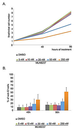 Dose-dependent effects of MLN8237 on cell growth and viability.