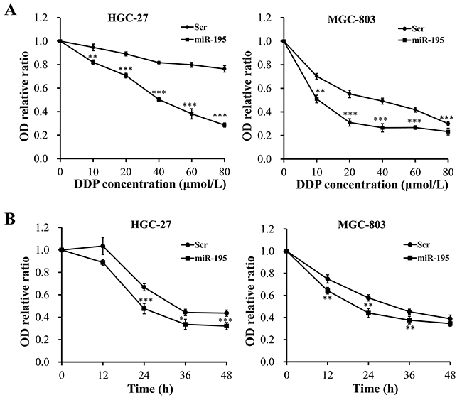 Overexpression of miR-195 enhanced the chemotherapy sensitivity of DDP in GC cells.