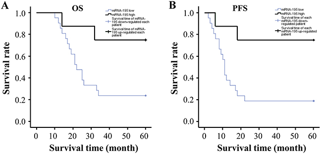 The correlation analyses between miR-195 expression and prognosis of patients with GC.