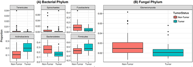 Box and whisker plots of relative abundance of the 6 bacterial phyla and one fungal phylum found significantly different between oral tongue tumor samples and their matched normal tissue samples.