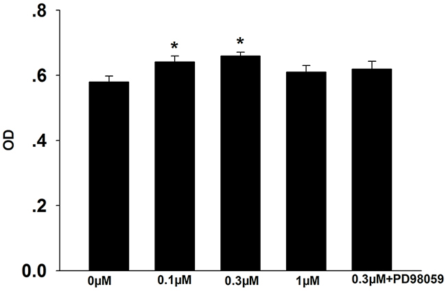 Effects of formononetin on CNE2 cell proliferation.