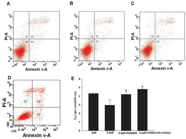 Effects of formononetin on the late apoptosis of CNE2 cells.