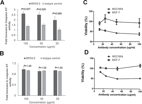 Anti-Lewis Y monoclonal antibody BR55-2 induced caspase-3/7 activation and growth inhibition in HCC1954.