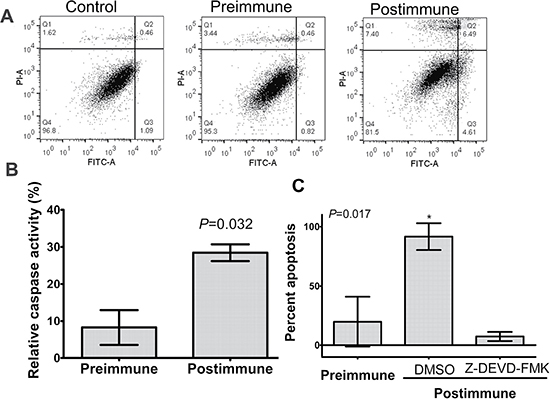 P10s-induced antibodies mediated apoptosis in ZR-75-1 with involvement of caspase 3.