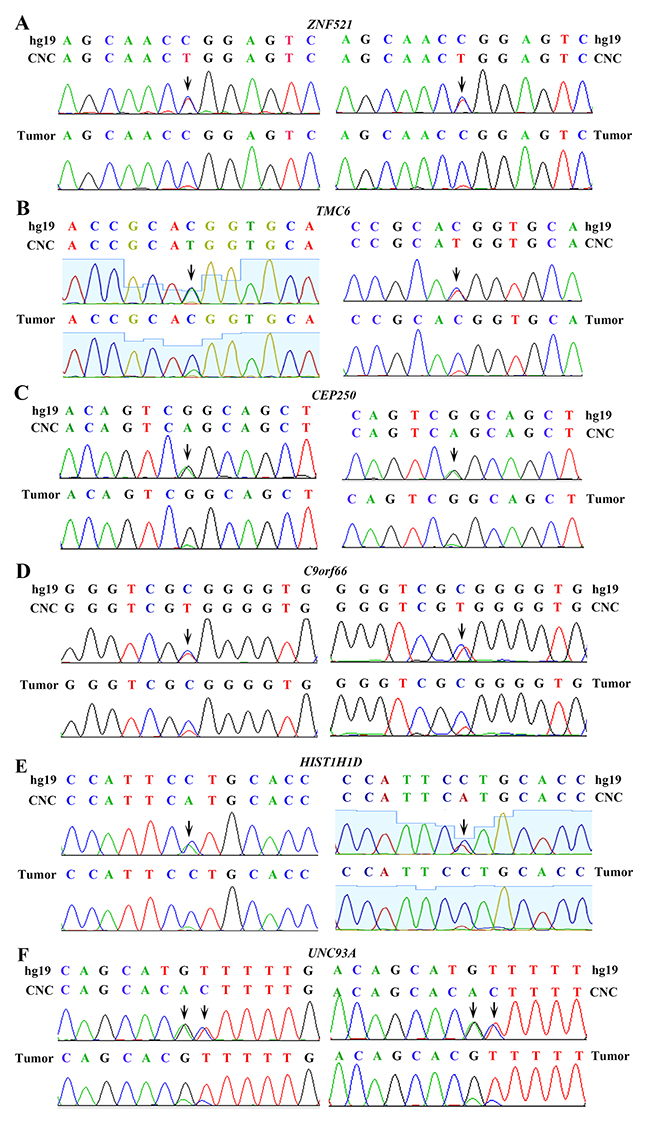 """Validation of genomic variations in """"normal"""" lung tissues."""