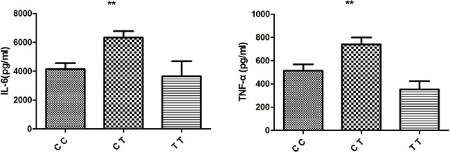Effect of TNFSF15/rs4246905 genotype on cytokine production by LPS stimulated PBMCs from healthy genotyped individuals (CC: N = 18, CT = 20, and TT: N = 5).