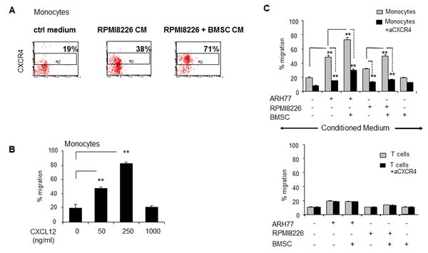 Peripheral blood monocytes respond in a CXCR4-dependetnt manner to MM-induced migratory signals and demonstrate dose-dependent migratory ability in response to CXCL12.