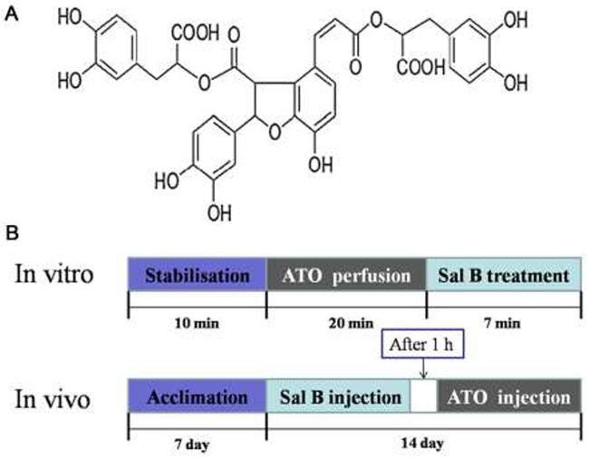 Sal B molecular structure.