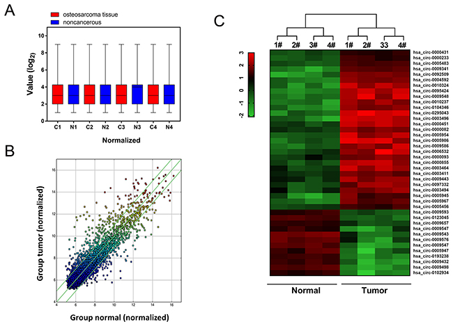 Circular RNA microarray expression profiles of osteosarcoma tissue and adjacent normal tissue.