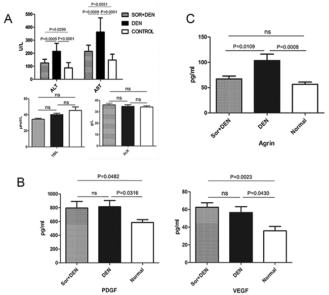 The effects of sorafenib on biochemical parameters in rats induced to develop HCC using DEN.