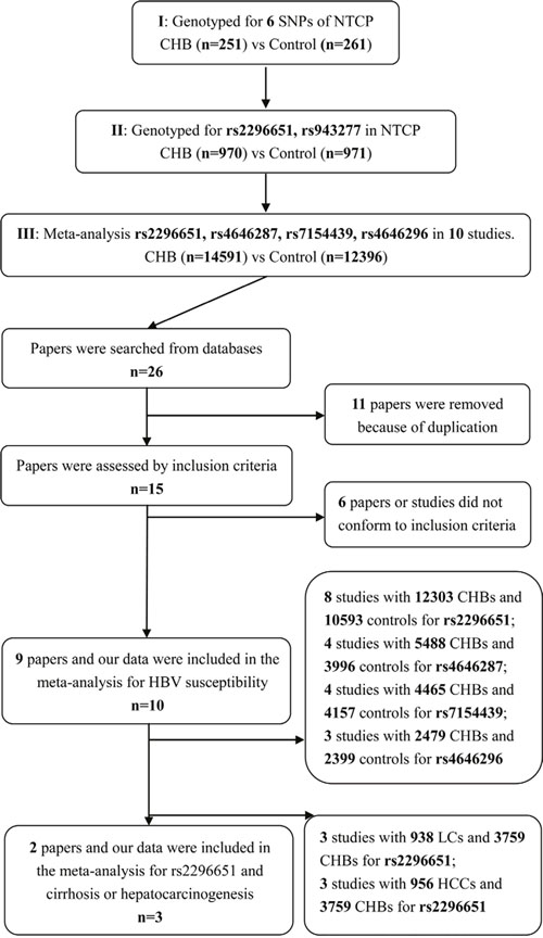 Grouping strategy for the population in the experimental study and selection for eligible studies included in this meta-analysis.