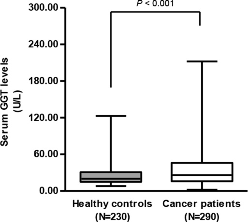 Serum GGT levels in cervical cancer patients (N = 290) was significantly higher than those of healthy controls (N = 230) (35.6 ± 29.1 vs. 24.1 ± 14.7 U/L, student's t-test, P < 0.001).