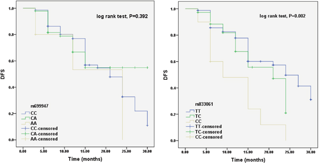 Effects of rs699947 and rs833061 polymorphisms on PFS among CRC patients receiving BEV treatments.