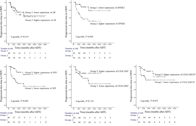 Prognostic usefulness of five genes that associated with progression from locally advanced or advanced prostate cancer (PC) to castration-resistant PC (CRPC).