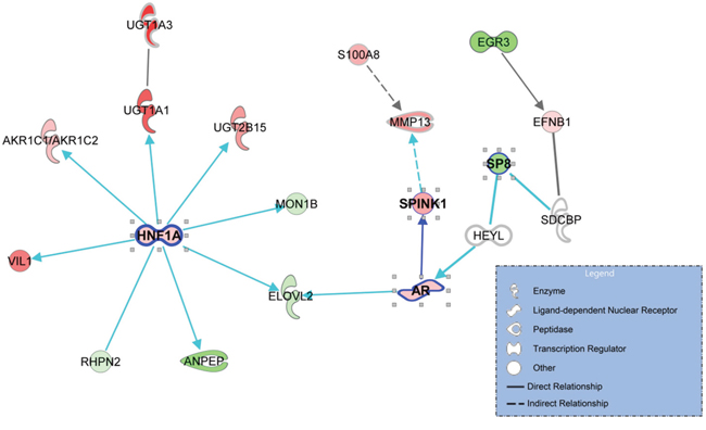 The gene networks that are enriched with the genes that associated with progression to castration-resistant prostate cancer (CRPC).