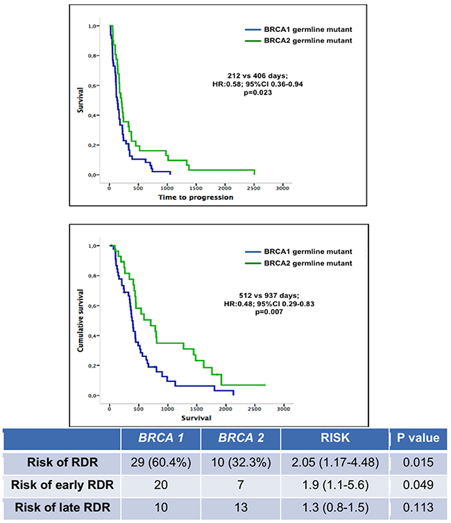 TTP and OS of patients harboring germline BRCA1 and BRCA2 mutations.