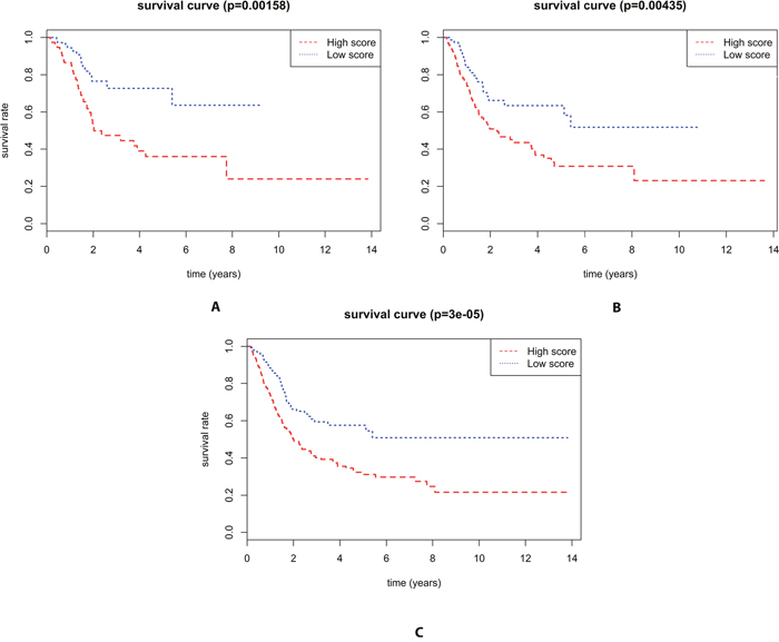 Kaplan–Meier curve for three miRNA signature and the survival time of BLCA patients.