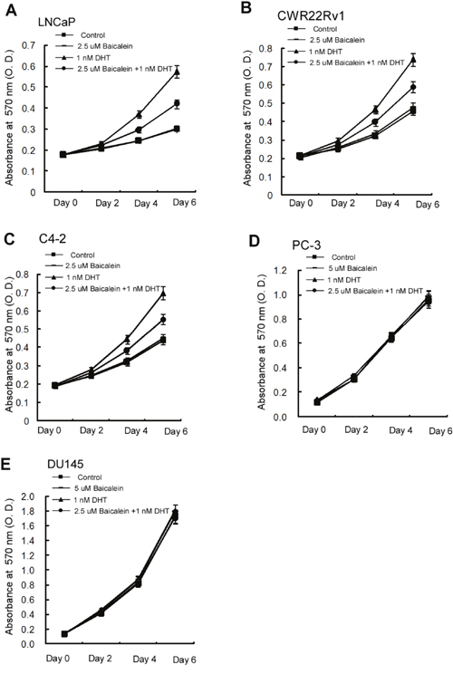 Differential growth inhibition effects of Baicalein on different prostate cells.