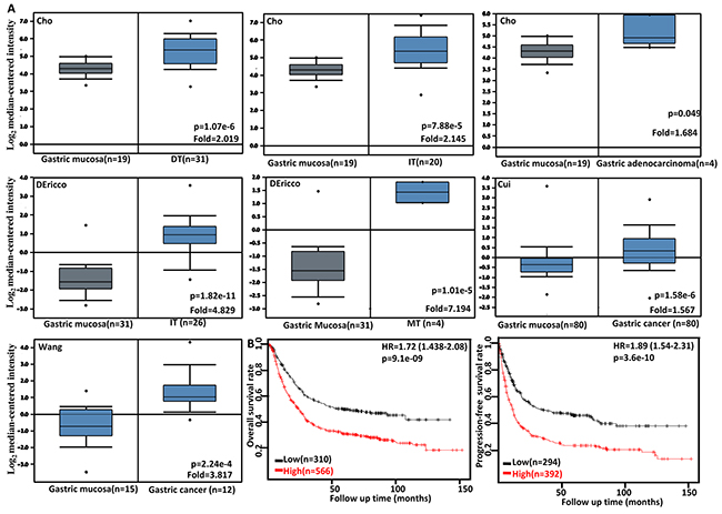 The clinicopathological significances of FSCN1 mRNA expression in gastric cancer.