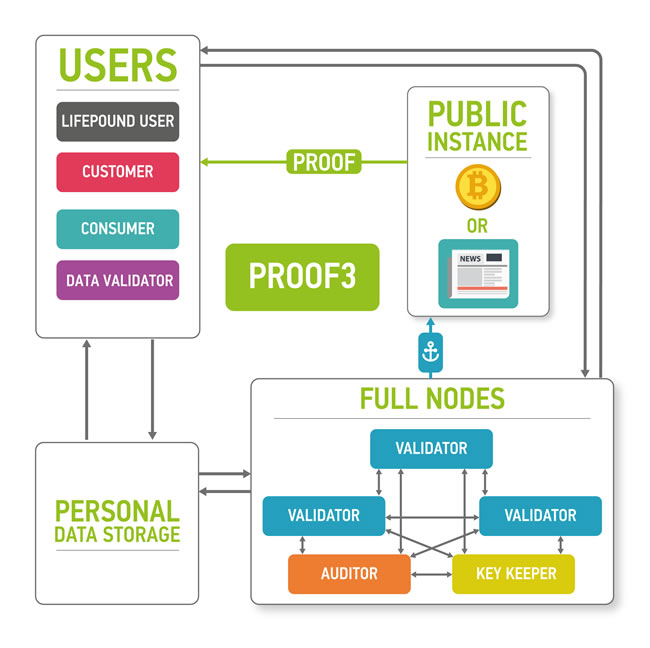 The marketplace ecosystem consisting of the four parts: blockchain part, data storage, users and public instances.