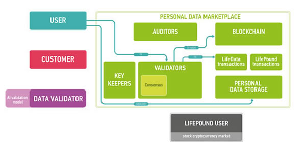 The workflow example for marketplace users.
