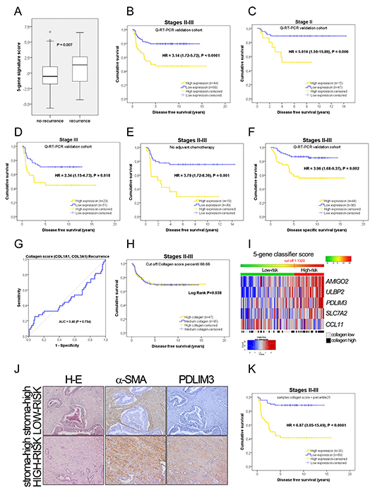 Prognostic information in the PCR independent validation.