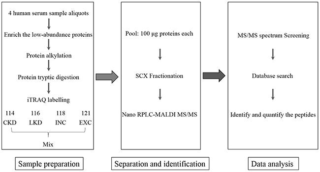 Flowchart of iTRAQ proteomics approach.