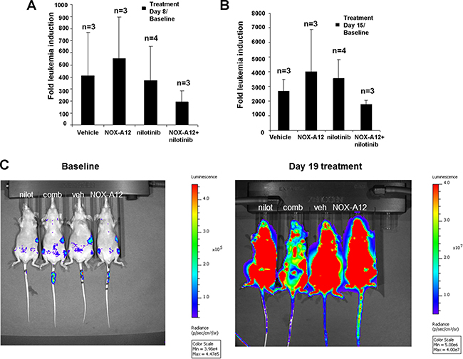 NOX-A12 potentiation of effects of ABL inhibition against BCR-ABL-positive cells in vivo: Effects on total body leukemia burden.
