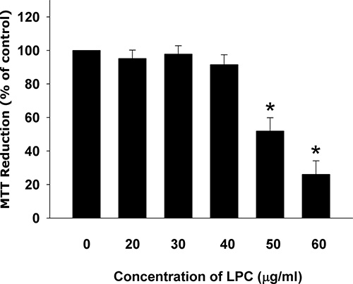 Cytotoxicity of LPC to endothelial cells as analyzed by MTT.