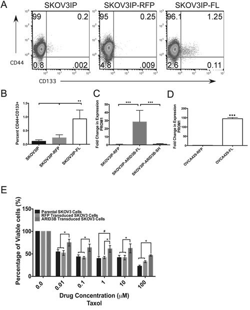 ARID3BFL expands the pool of ovarian cancer stem cells.