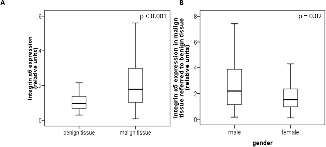 Protein level of integrin α5 in benign and malign renal tissue of 141 patients with clear cell RCC.