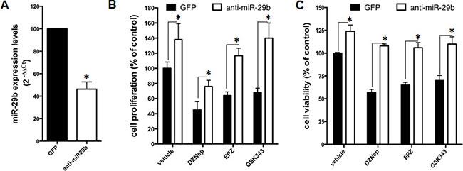 miR-29b antagonism impairs in vitro anti-MM activity of EZH2 inhibitors.