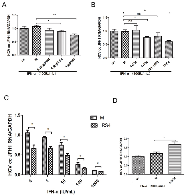 IRS4 regulated HCV replication in JFH1 infected Huh7.5.1 cells.