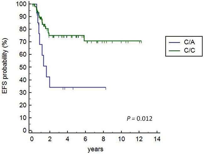 Kaplan-Meier survival analysis of +3027C/A HLA-G polymorphisms.