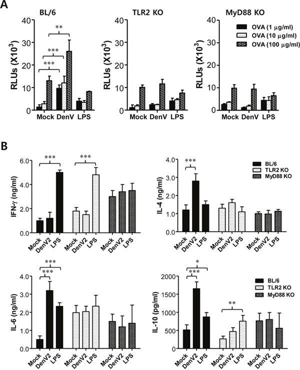 DenV-infected DCs promote Th2 immune response via TLR2/MyD88-dependent pathway.