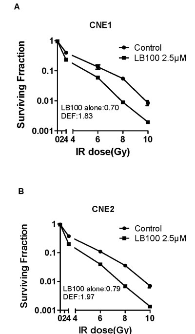 The effects of LB100 on radiosensitivity of CNE1 and CNE2 by clonogenic assay.