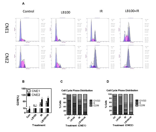LB100 and IR induce cell cycle progression in CNE1 and CNE2 cells.