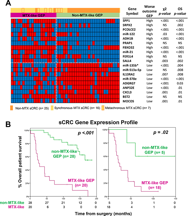 Prognostic impact of the GEP classifier based on those 19 coding plus non-coding genes that better differentiated between metastatic and non-metastatic sCRC.