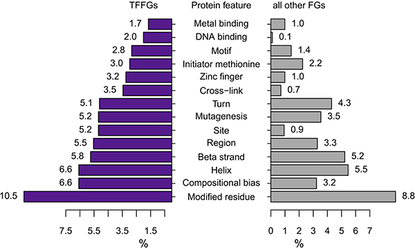 Comparison of retained protein features between TFFGs and all other FGs.