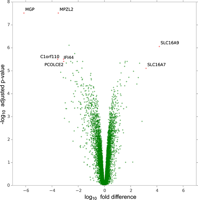 Volcano plot of genes according to the magnitude (fold-difference, x-axis) and significance level (-log10 adjusted p-value, y-axis) of their difference in expression in H1975C5 and H1975C5 cells compared to H1975DM cells from gene expression array analysis.