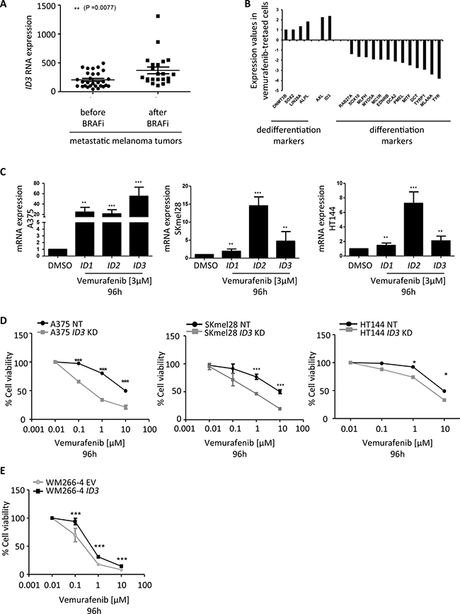 ID3 expression regulates melanoma adaptive resistance to vemurafenib.