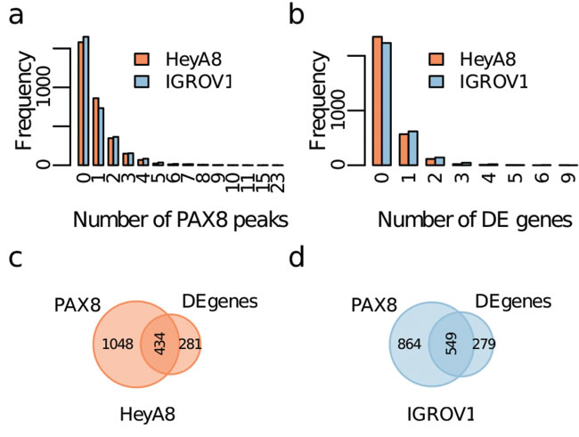 Identification of PAX8 regulatory targets using topological association domains (TADs).