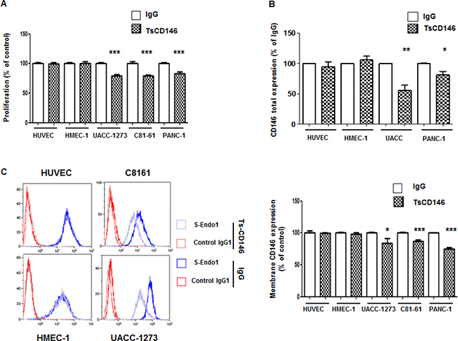 Effect of TsCD146 mAb antibody on cell proliferation and CD146 expression.
