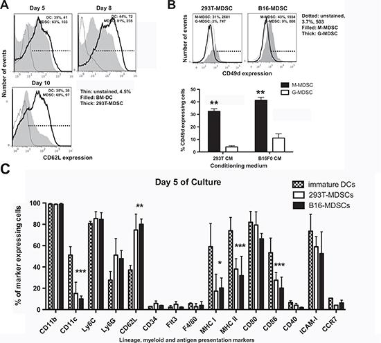 Phenotype profiling of ex vivo-differentiated MDSCs.